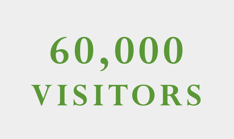 60,000 visitors in 6 months